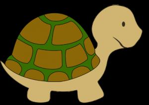 Wir basteln Schildi Schildkröte | Kleine schildkröten ...