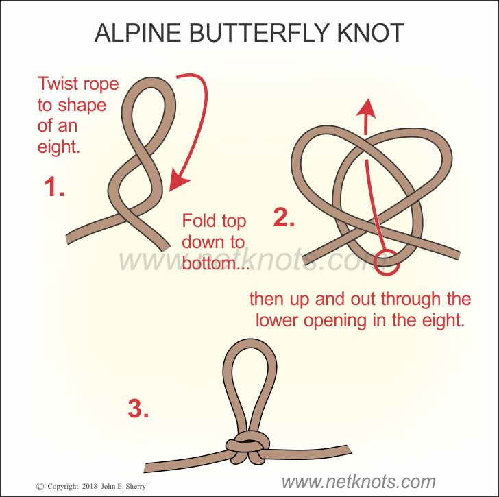 Alpine Butterfly Knot - How to tie an Alpine Butterfly Knot   All Knots Animated