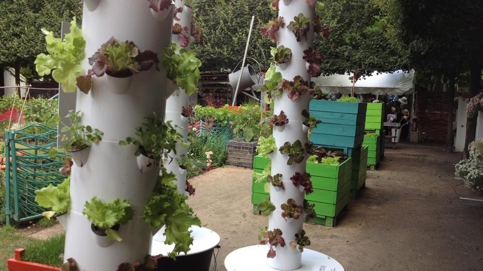 Jardins jardin cr er un potager hors sol jardins - Creer un jardin potager ...