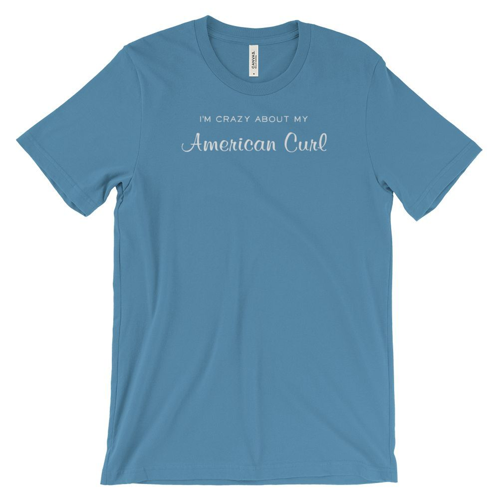 I am crazy about my American Curl