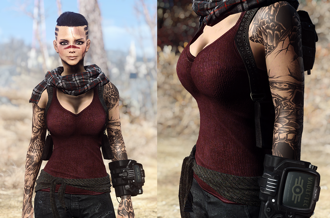 Eli's Armour Collection Remade - Vanilla and CBBE at Fallout