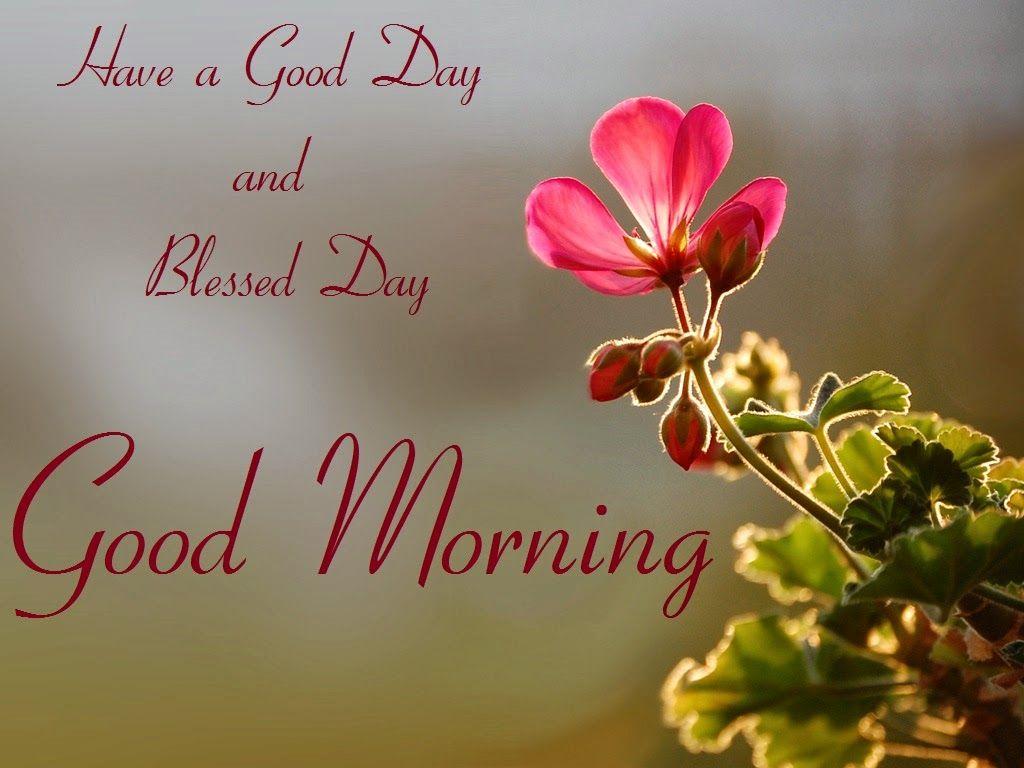 Merveilleux Happy Good Morning Flowers With Messages   Elegant HD Desktop Wallpaper