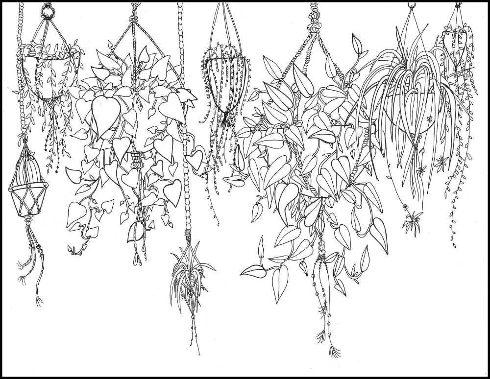 Printable Coloring Page Hanging Plants Etsy In 2021 Coloring Pages Printable Coloring Pages Line Art