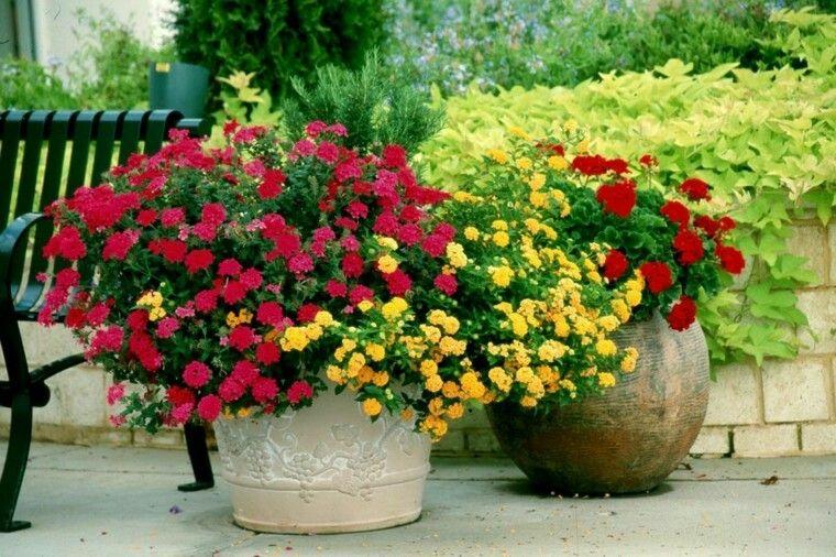Macetas con flores de distintos colores para el jardín ideas - maceteros para jardin