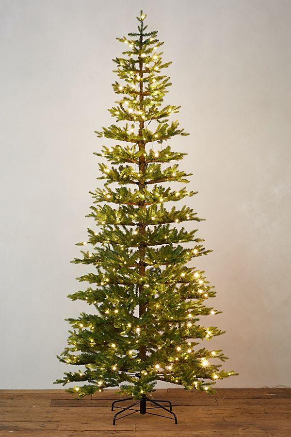 Faux PreLit LED Queensland Tree Led lights, Faux tree