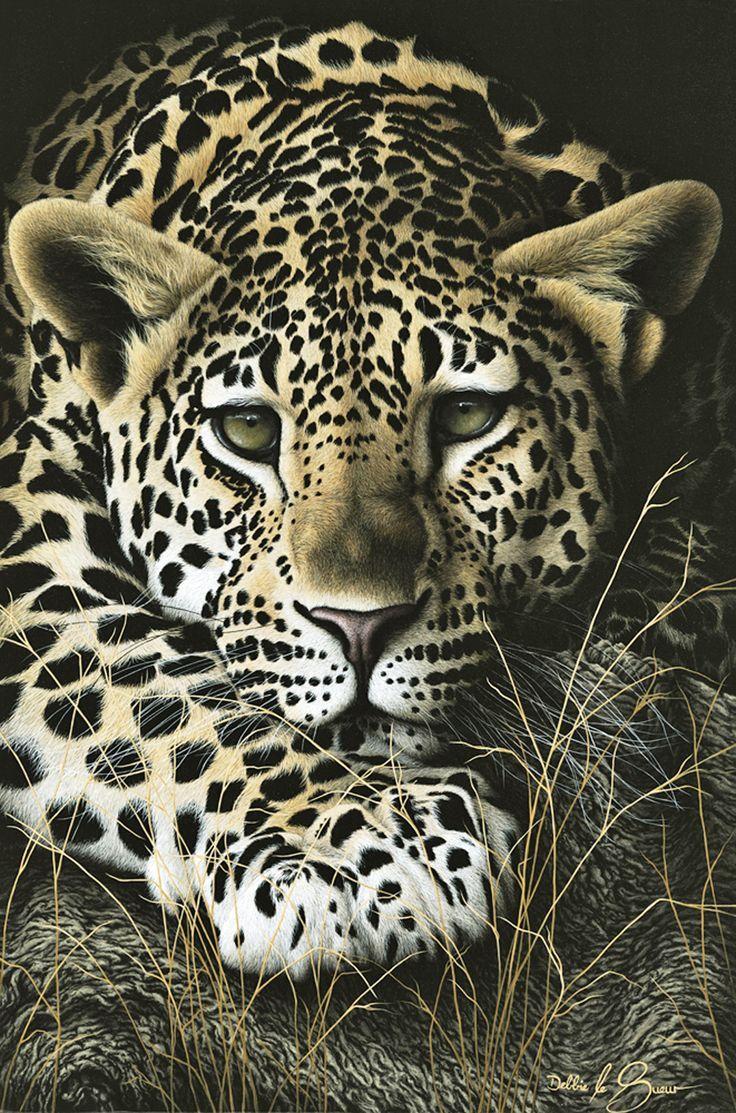 Wild Cat Hd Desktop Wallpaper High Definition Fullscreen Mobile Animals Wild Cats Animal Art