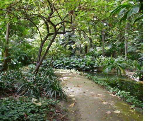 Billede af La Concepcion Jardin Botanico Historico de Malaga