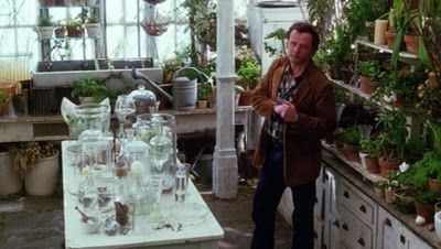 The Practical Magic Conservatory: Coolest TV & Film Witches' Spaces by The Witch of Howling Creek