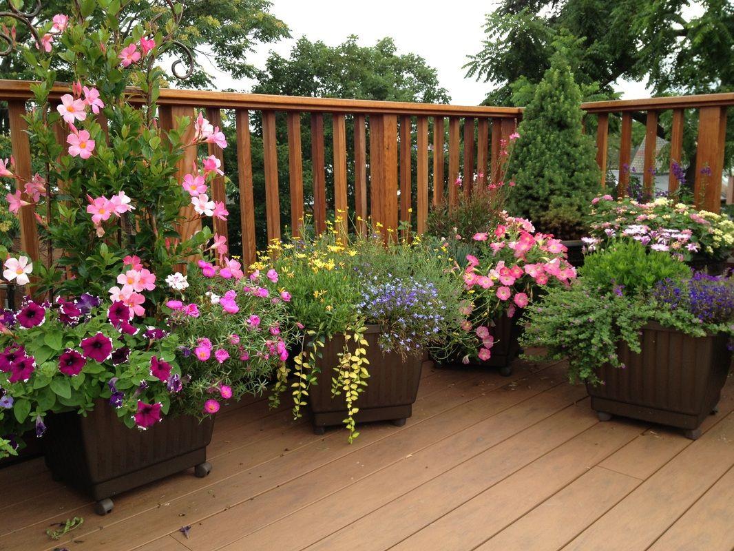 Garden Design Garden Design With Barrel Tub Garden Pot Garden Garden Plant Pots Garden Design Front Yard Garden Design