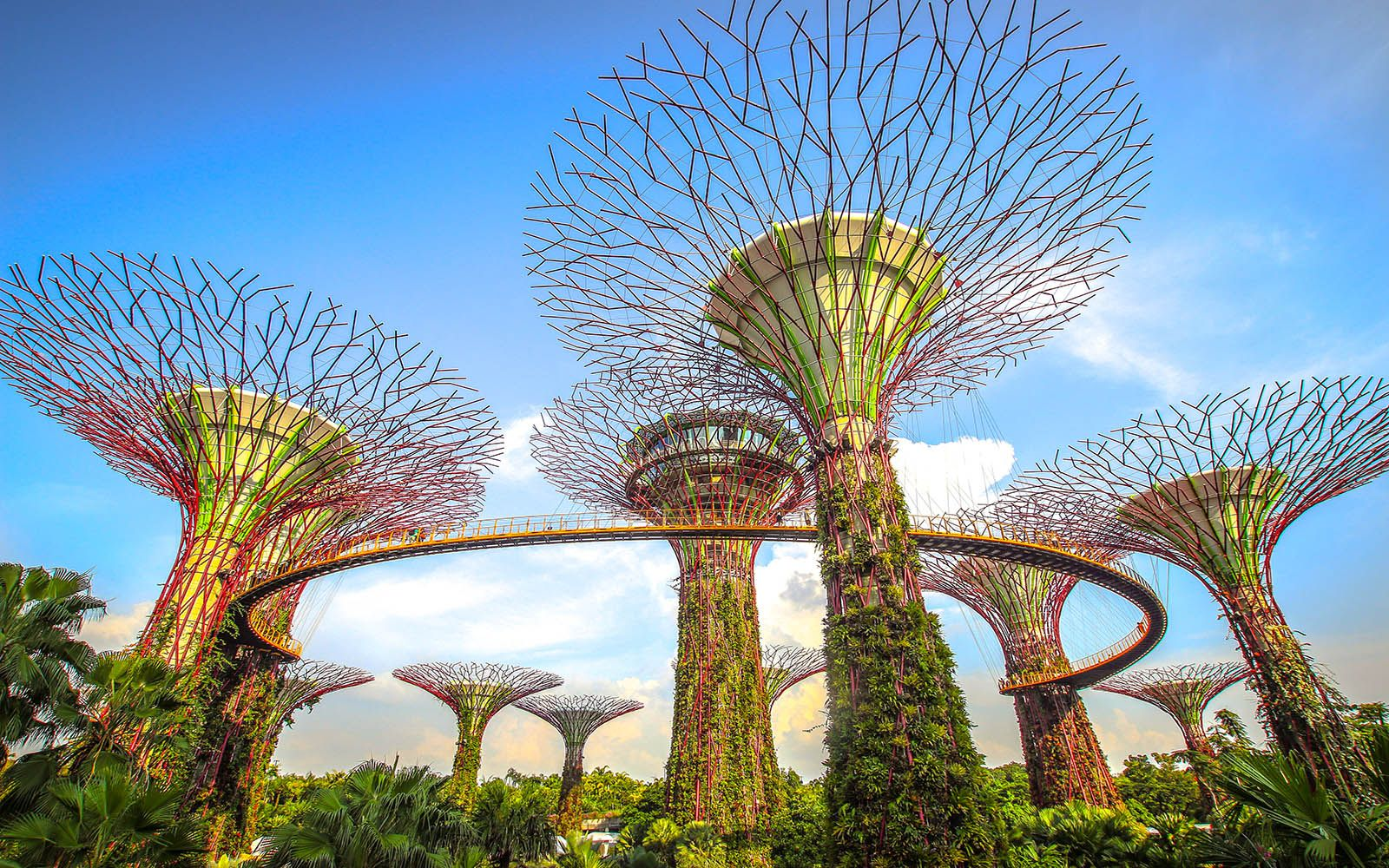 dff7bd4093d1276ab178baeb86226dd8 - Gardens By The Bay Singapore On Budget