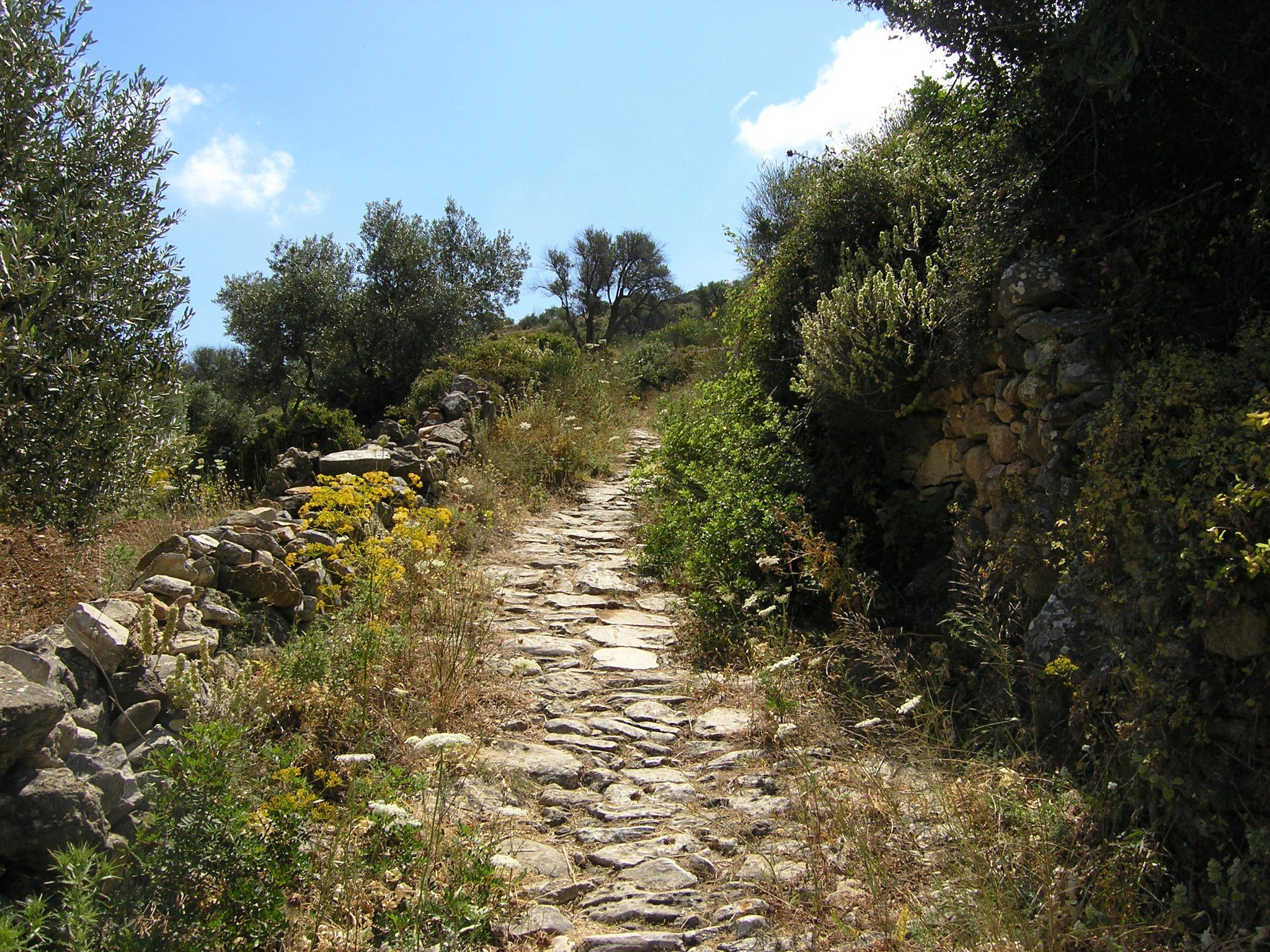 The Byzantine Walking Trail in Lefkes #Paros. Follow your way through the inspiring nature of the Cycladic mountains.