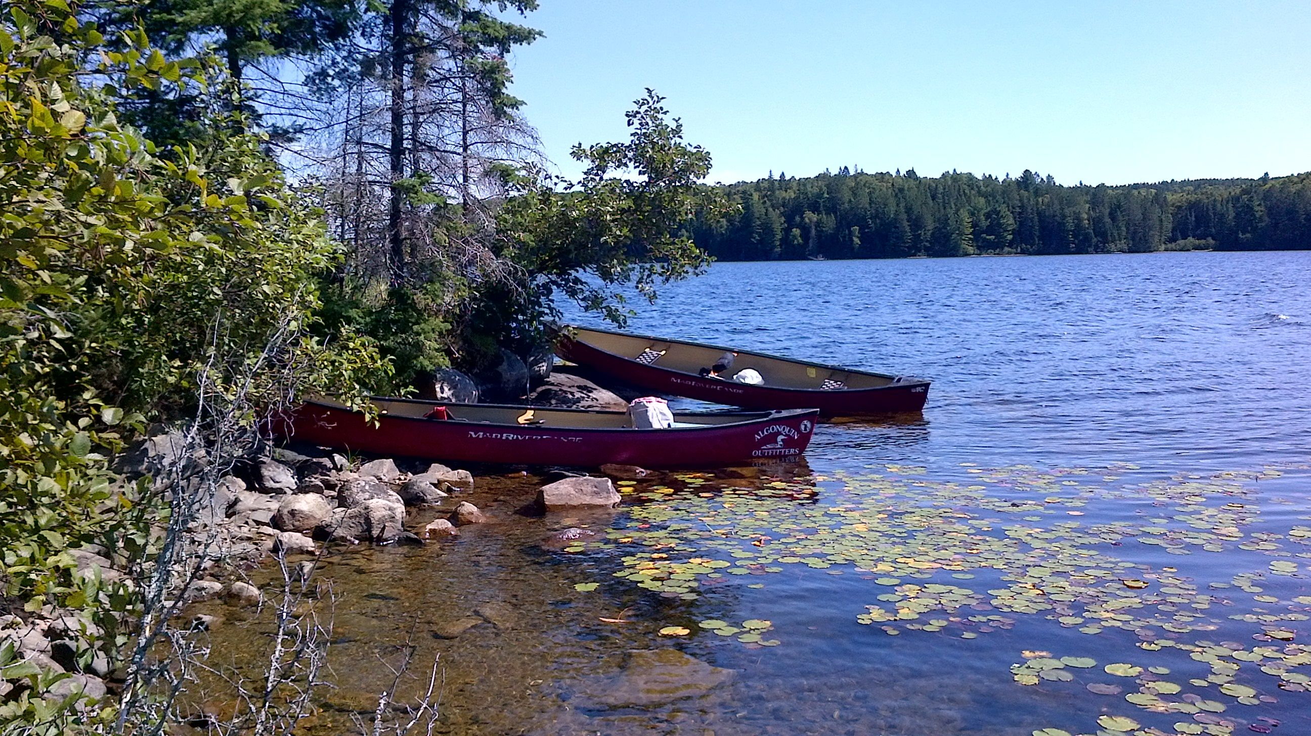 Not quite Toronto, but only a couple of hours north in Opeongo Lake, Ontario