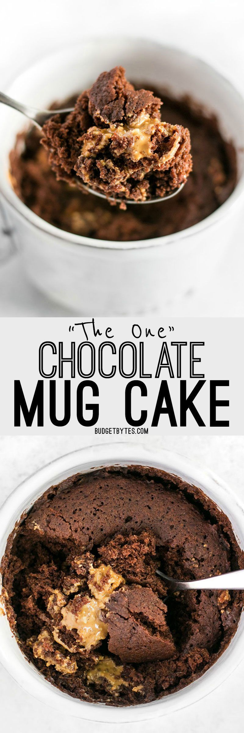 """The One"" Chocolate Mug Cake 