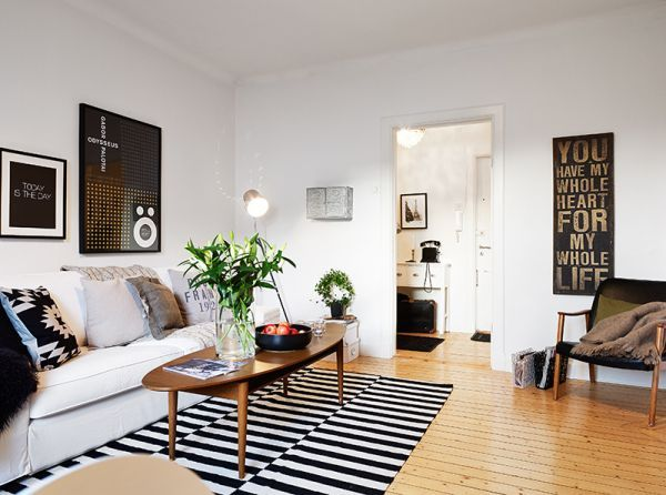 litter-box-small-apartment-black-and-white-interior-design-small ...