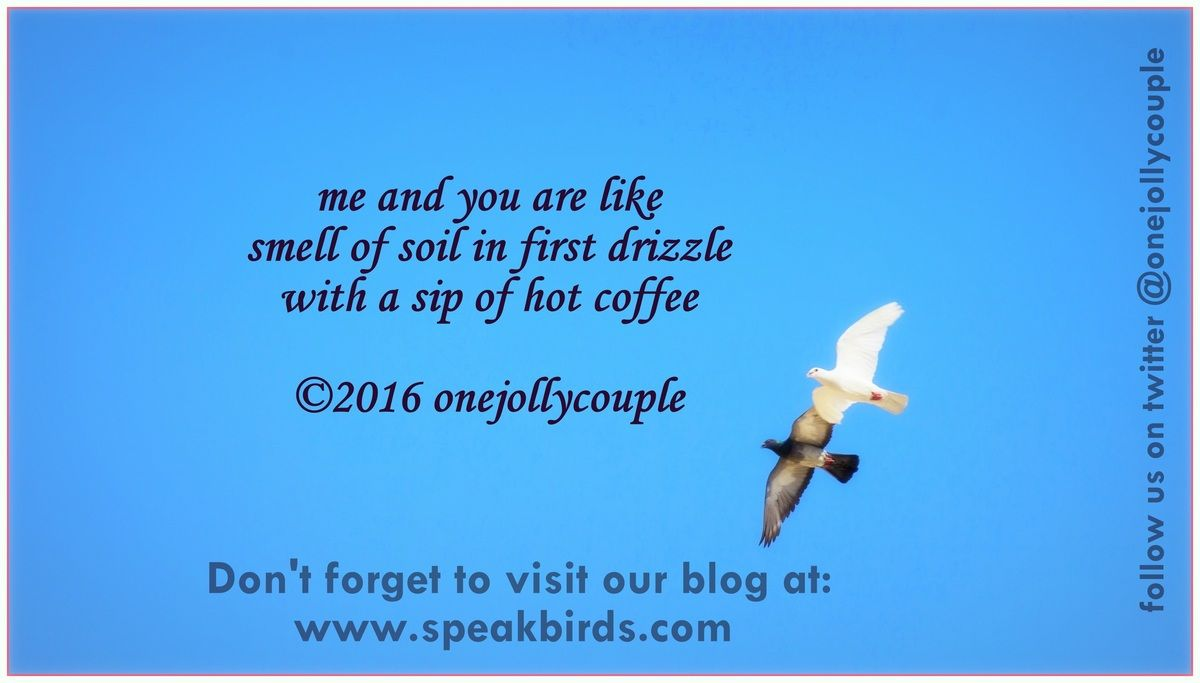 me and you are likesmell of soil in first drizzlewith a sip of hot coffee©2016 onejollycouple (speakbirds.com | Blog)