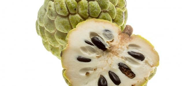 ما هي بذور المحلب Fruit Vegetables Artichoke