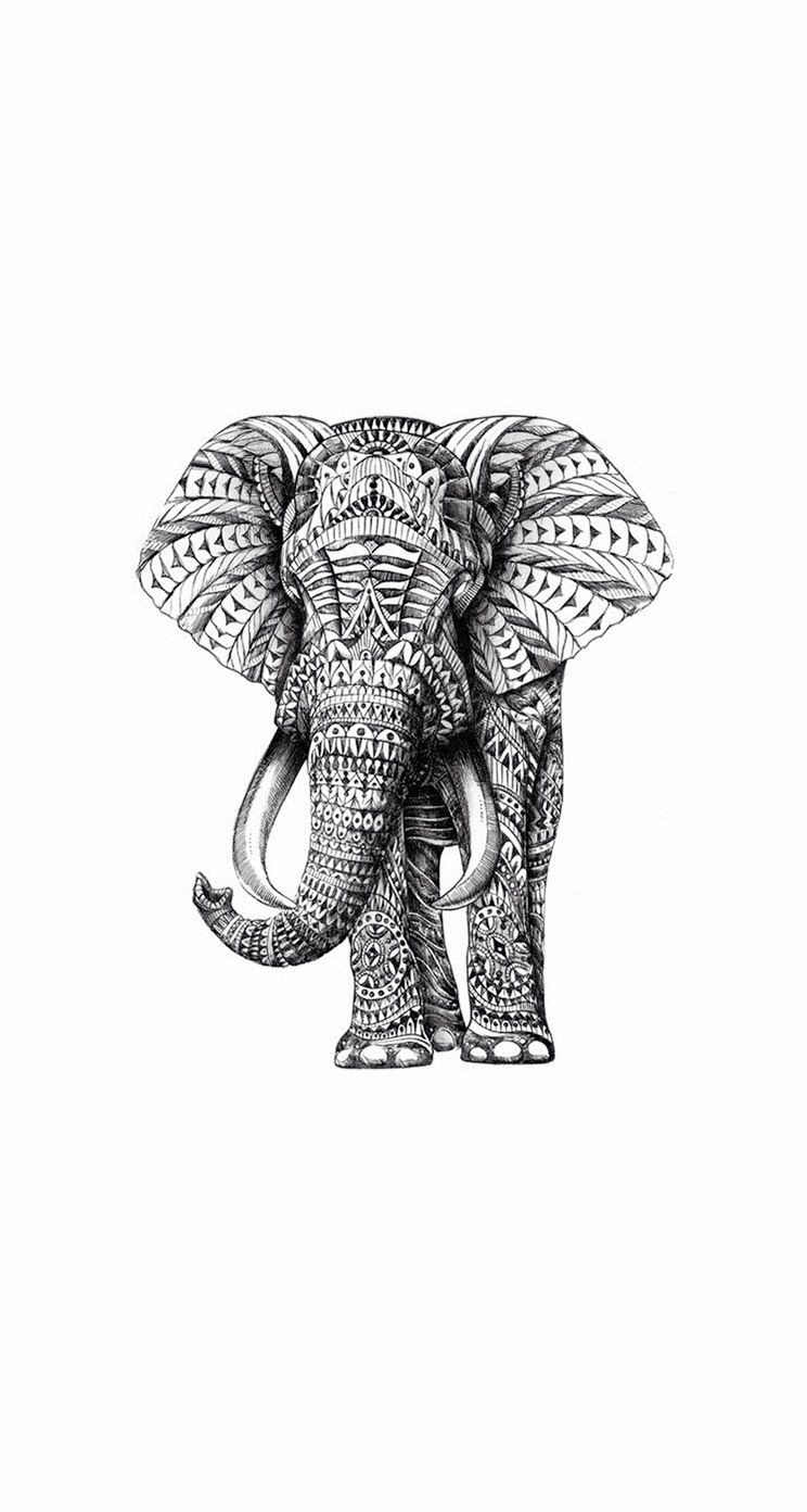 Wallpapers For Iphone 5 Find A Wallpaper Background Or Lock Screen For Your Iphone Here Elephant Print Art Elephant Art Art