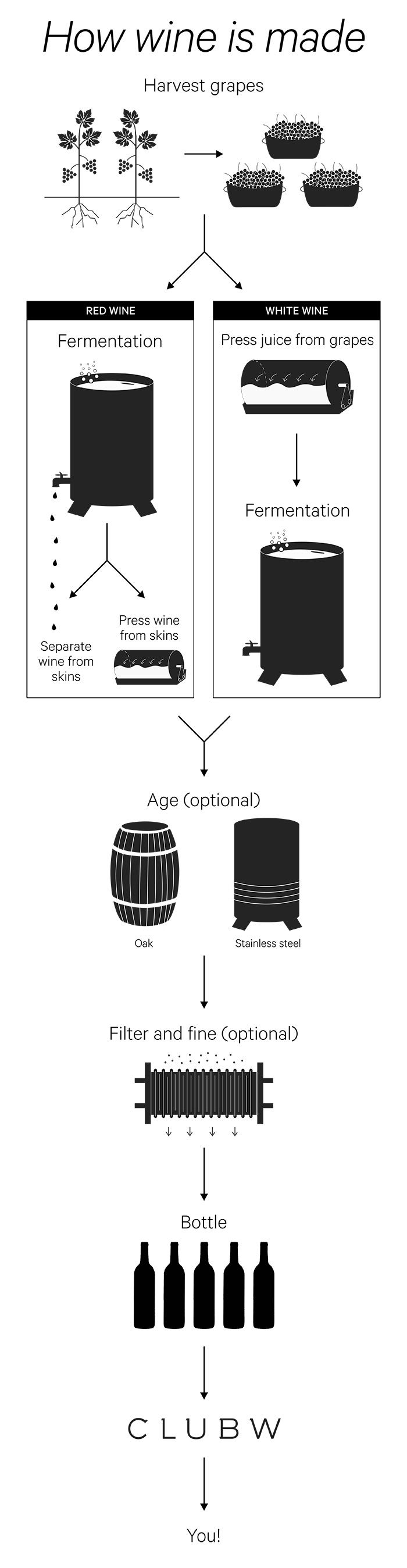 Infographic How Wine Is Made The Winc Blog Wine Making Supplies Wine And Beer Wine Education