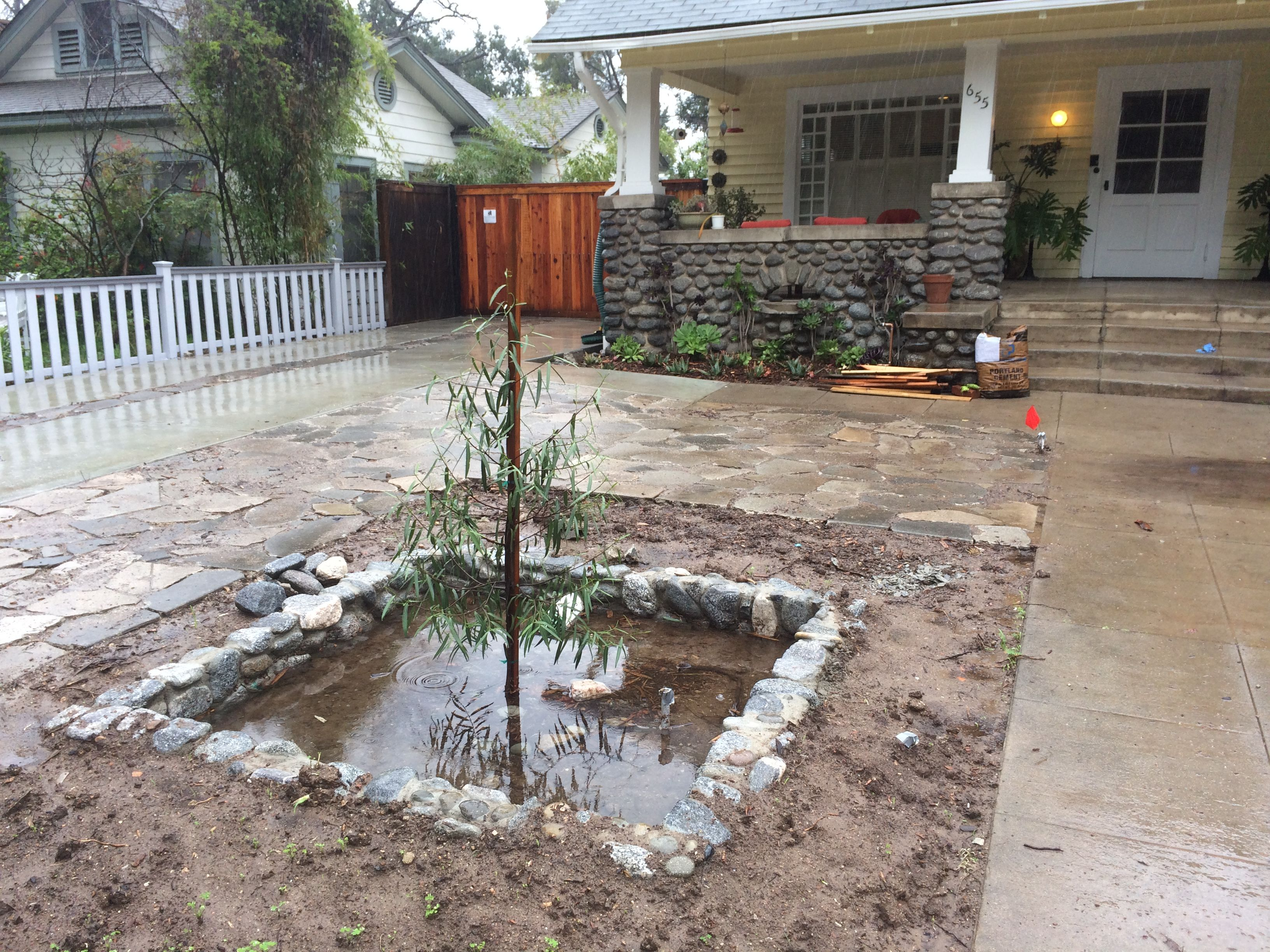 pin by sb garden design on drought flood waterharvesting