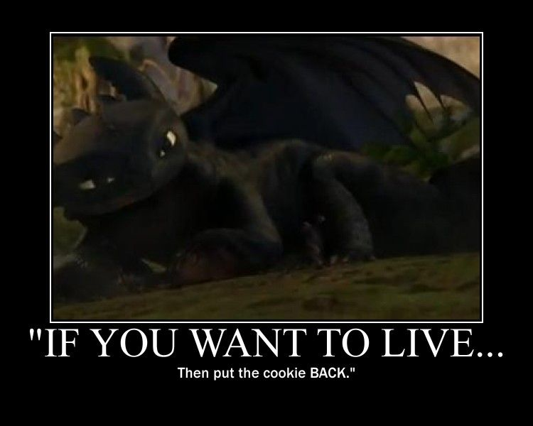 Toothless Memes School Of Dragons How To Train Your