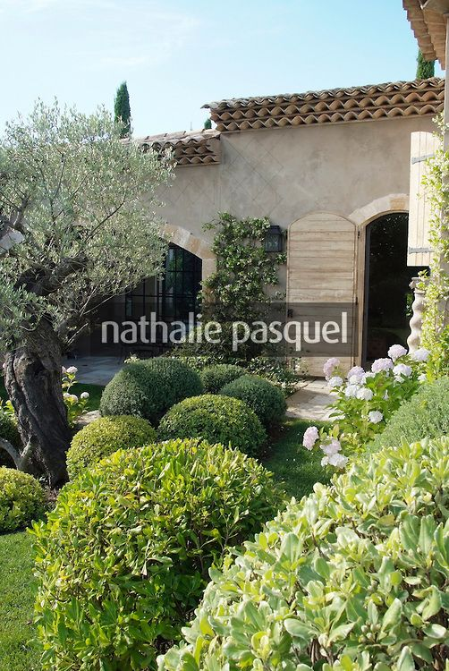 Jardin de facade massif avec arbuste persistant for Jardin avec arbustes