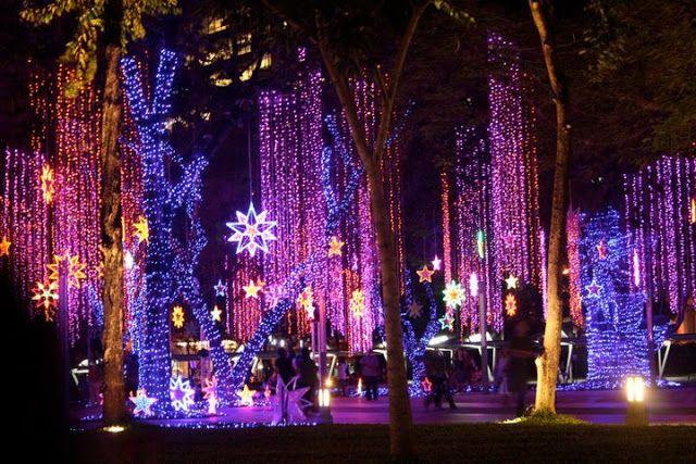 dffd5d8c1460f546e8fb2f4fb0bdd206 - Ayala Triangle Gardens Lights & Sounds Show Schedule