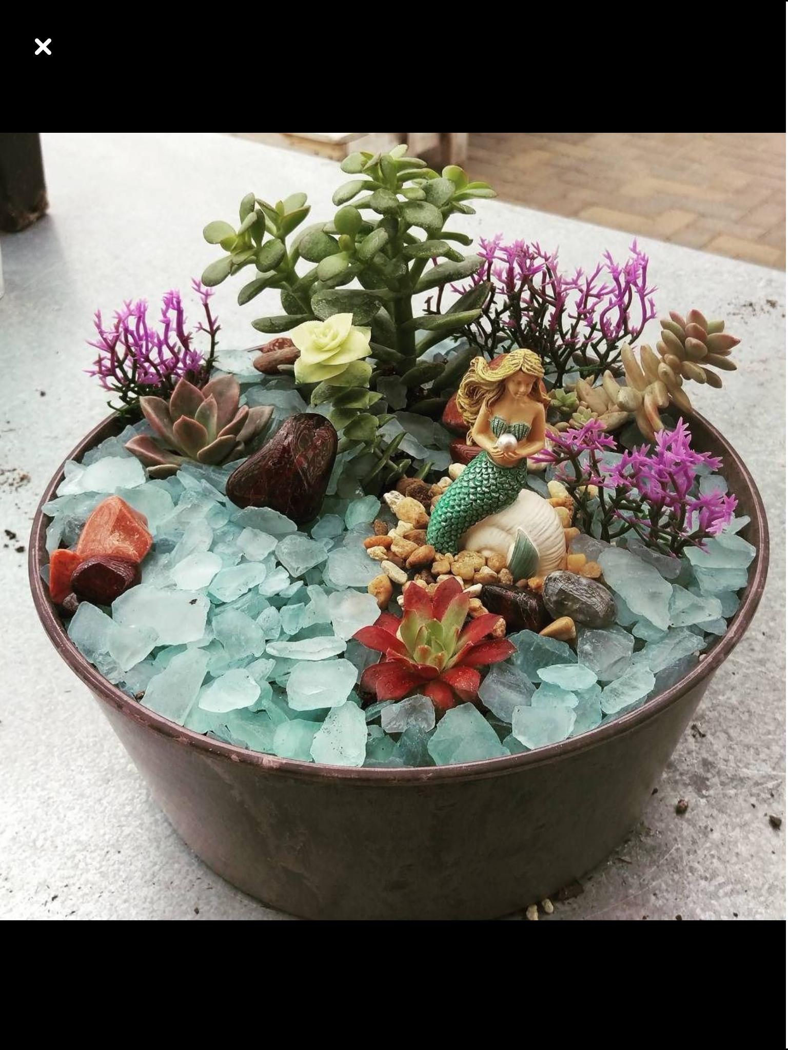 Pin By Ali Patterson On Garden Stuff Miniature Fairy Gardens