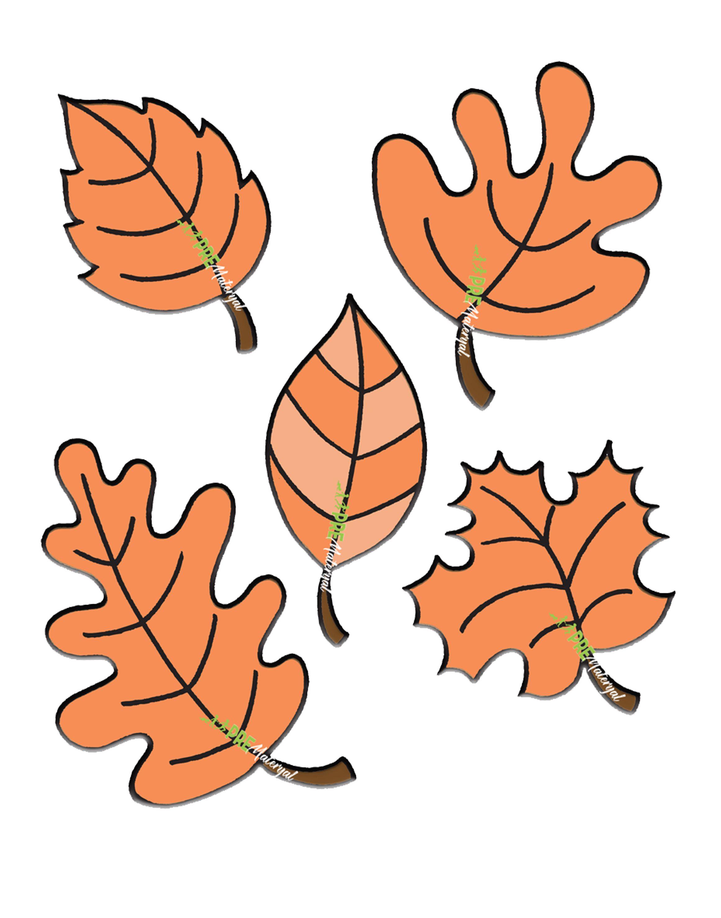 Renkli Yapraklar Premateryal Sonbahar Yapraklar Autumn Fall Leaf Yaprak Sonbahar