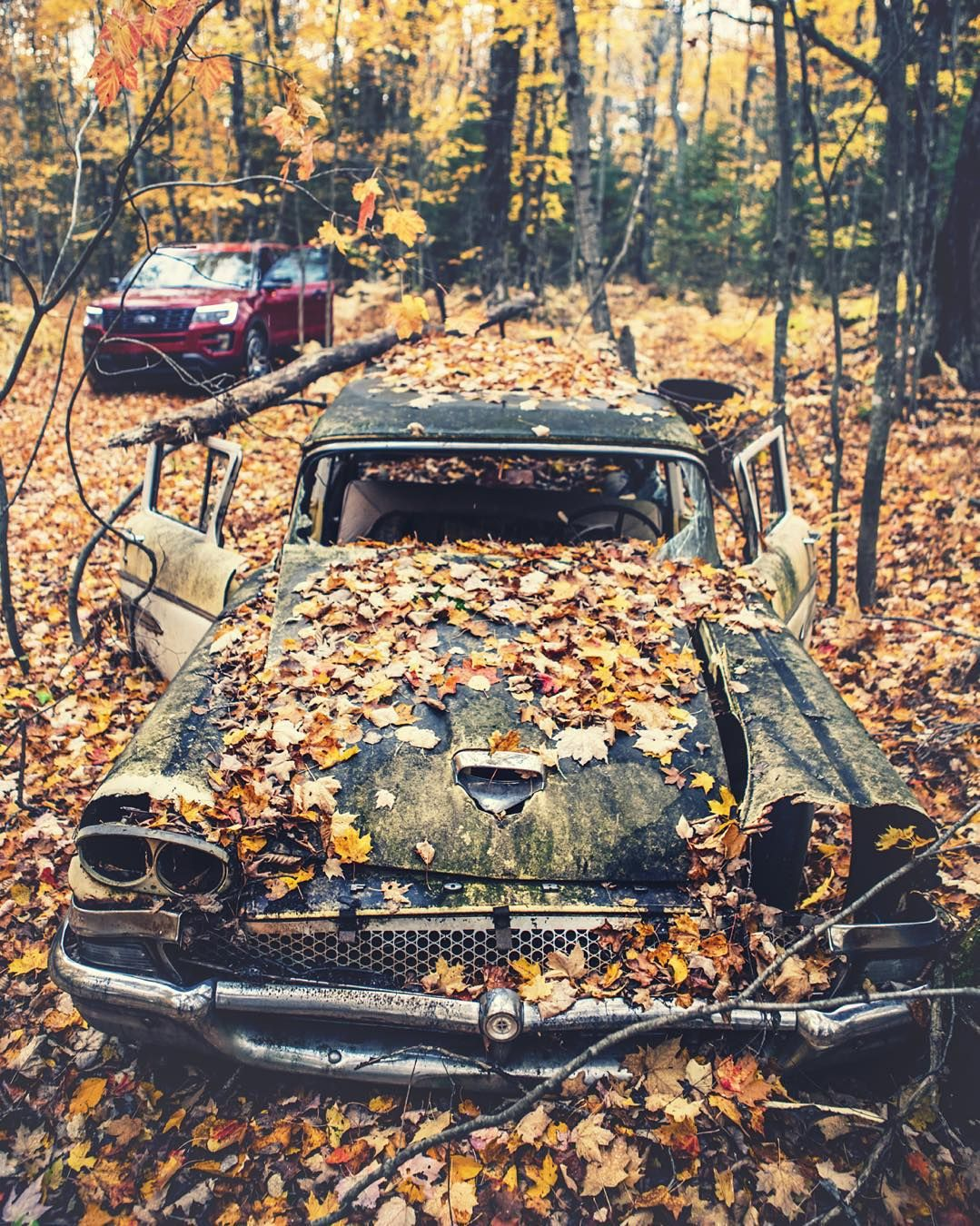 Always been fascinated by this mysterious  #abandoned Country Squire I found while hiking as a kid in the U.P. I also remember a second car in this location with suicide doors riddled with bullet holes that has now vanished. Yoopers were so gangster.  Revisited and photographed recently on our @ford road trip adventure. by camera_jesus