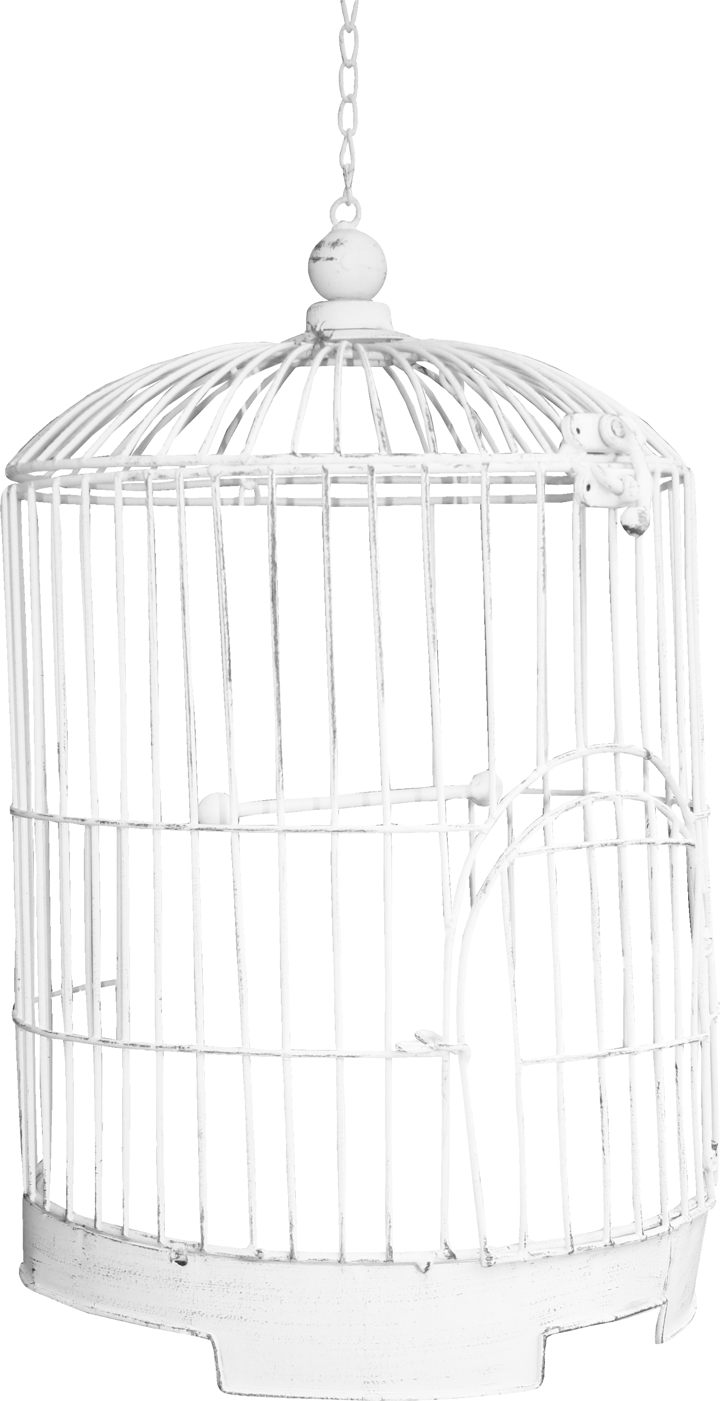 Bird Cage Png Image Bird Cage Bird Pet Birds
