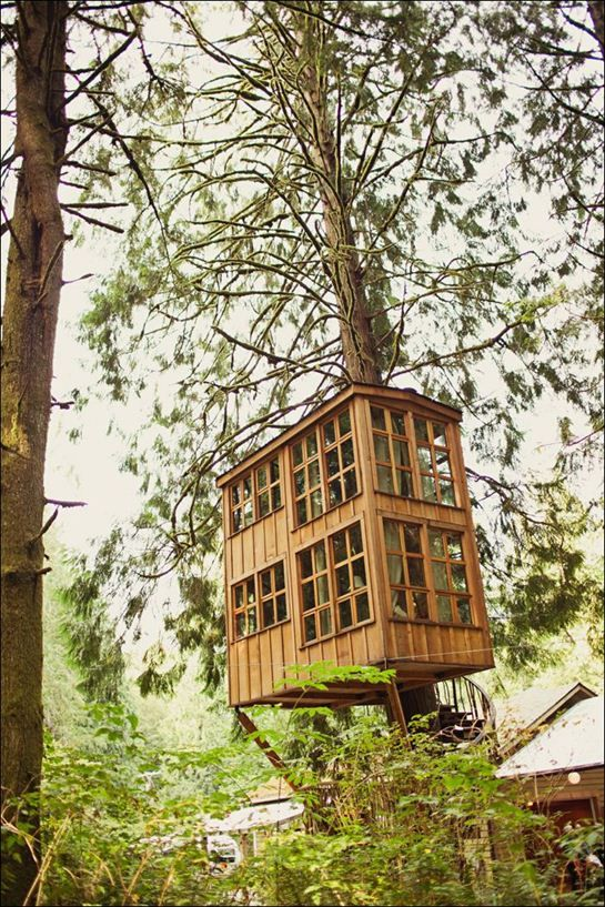 Treehouse Point, a bed and breakfast near Issaquah, WA