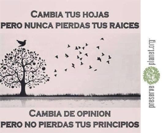 Cambia tus hojas, no tus raíces