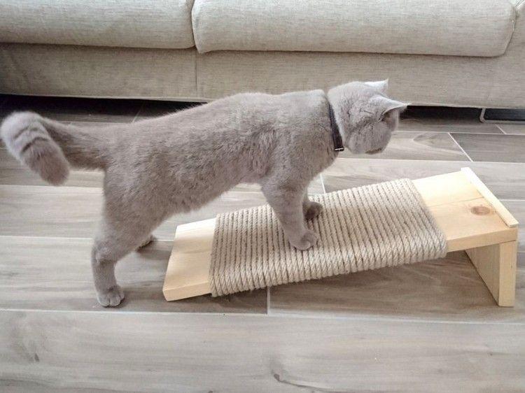 Mobili Per Gatti Fai Da Te : Costruire mobili antigraffio per gatti u idee fai da te e progetti