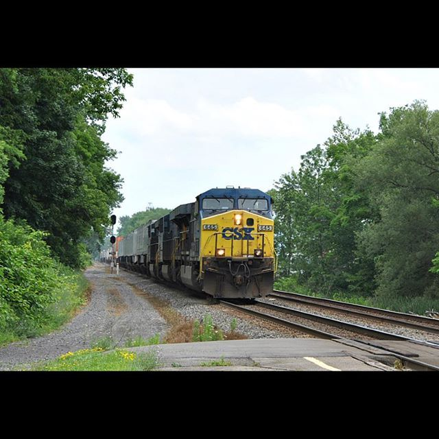 #CSXTrainQ019 #CSX645 #CSX3107 #CSX5424 #clearsignalproductions #train_nerds #trb_express #tv_transport #train_chasers #trains_worldwide #tracksarefortrains #eisenbahnfotografie #kings_transports #shipking_transports #daily_crossing #rail_barons #rsa_theyards #railfans_of_instagram #railways_of_our_world by aiden_nies_photography