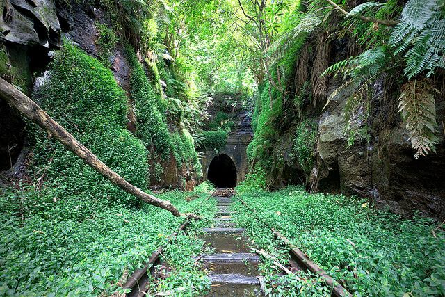 f o r g o t t e n    The old Helensburgh railway tunnel, New South Wales