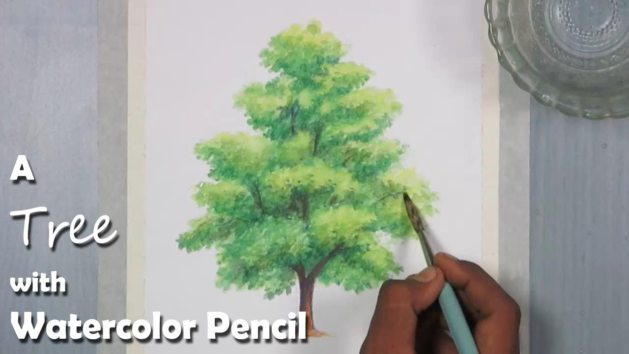 Colored Pencil Pine Trees