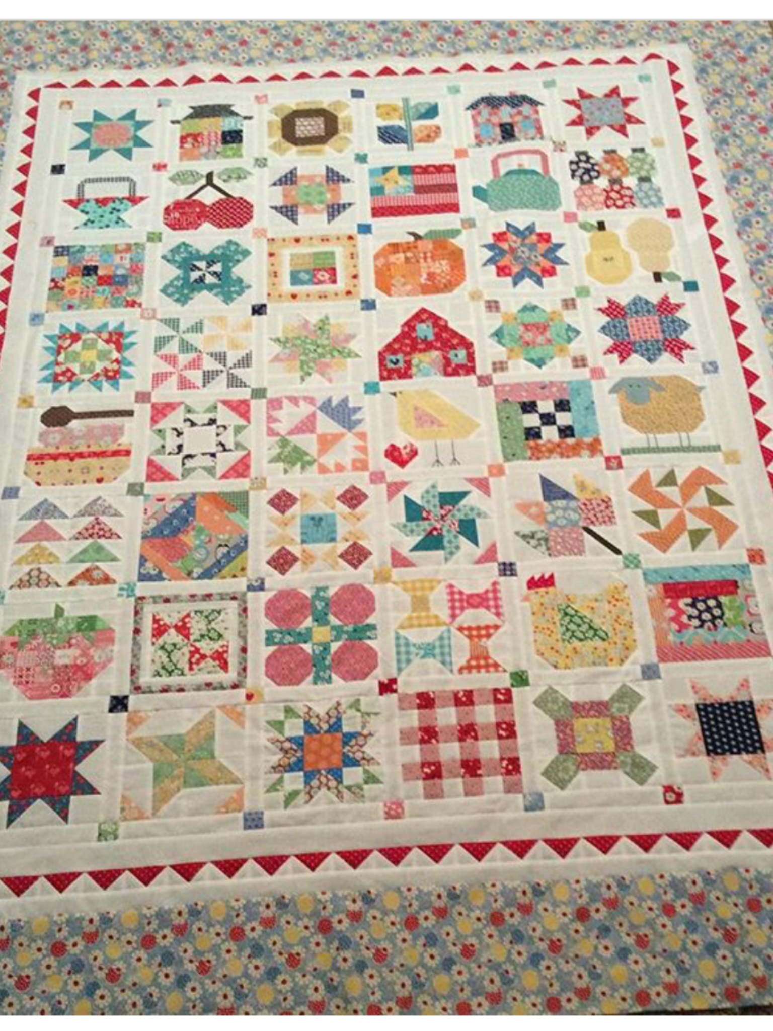Lori Holt S Sampler Quilt From The Book Farmgirl Vintage Sampler Quilts Farmhouse Quilts Quilts