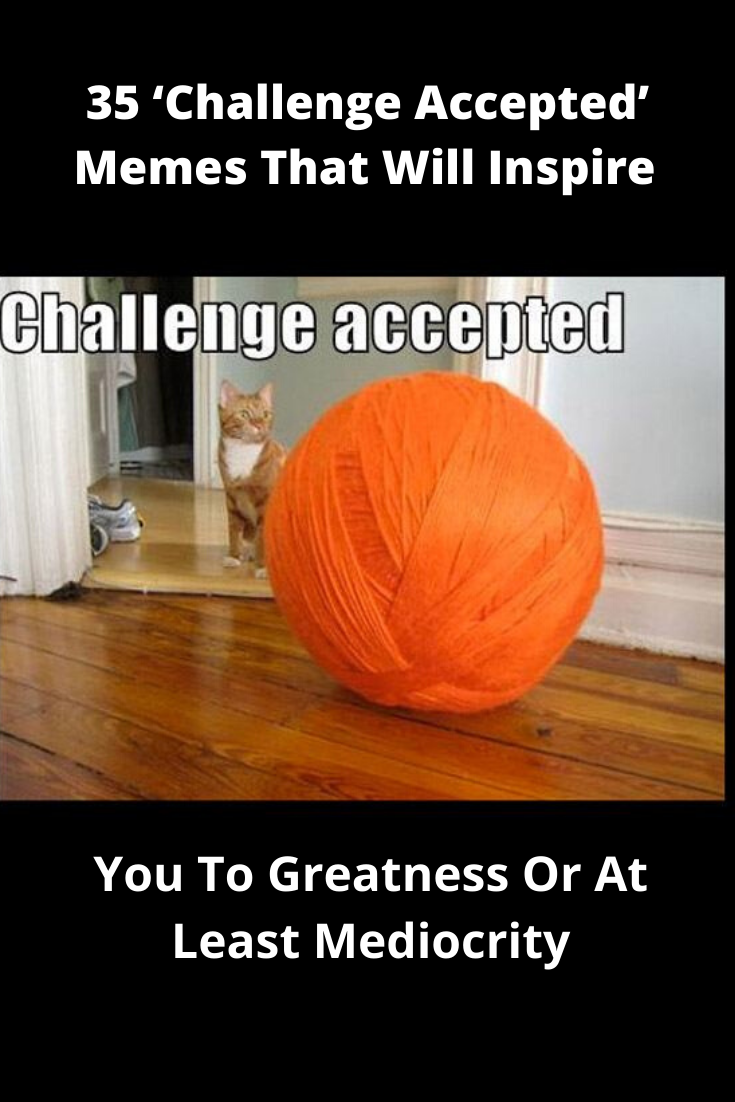 35 Challenge Accepted Memes That Will Inspire You To Greatness Or At Least Mediocrity Memes Challenges Best Memes