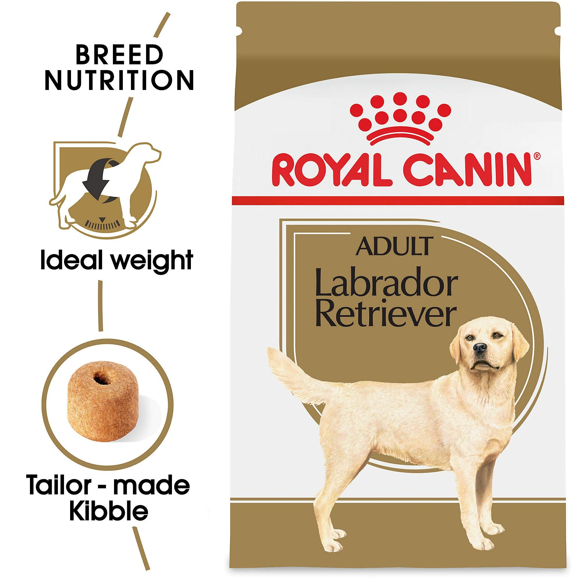 Royal Canin Breed Health Nutrition Labrador Retriever Adult Dry Dog Food You Can Get More Details By Clicking On The Image Dogfood In 2020