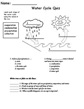 30+ Science worksheets for 5th graders about the water cycle Top