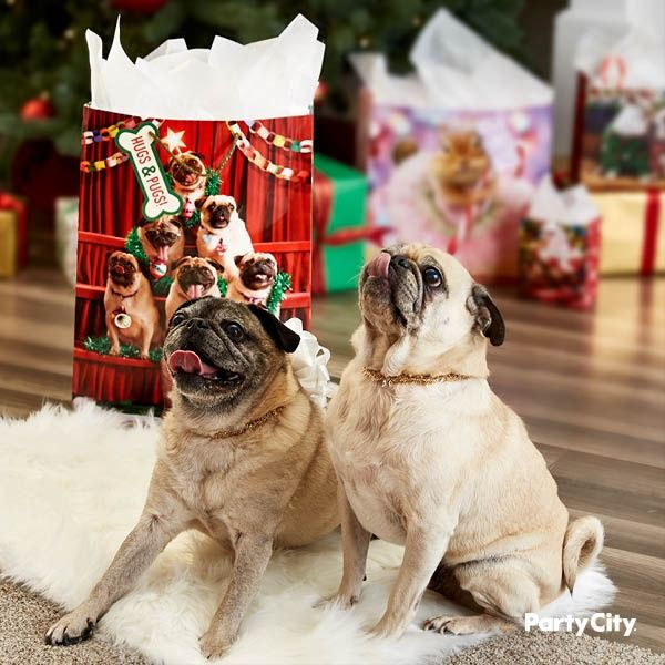 This Large Pug Tree Glossy Gift Bag Is A Gift In Itself The Paper