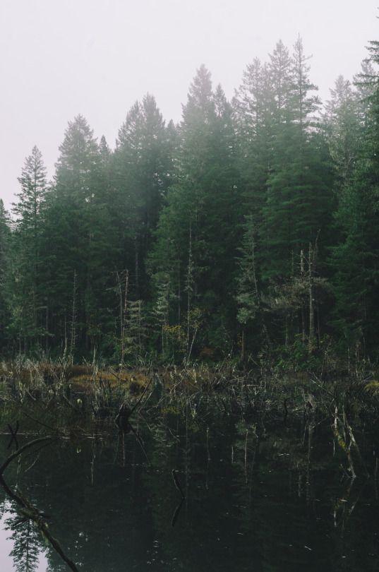 Milli Vedder Photography