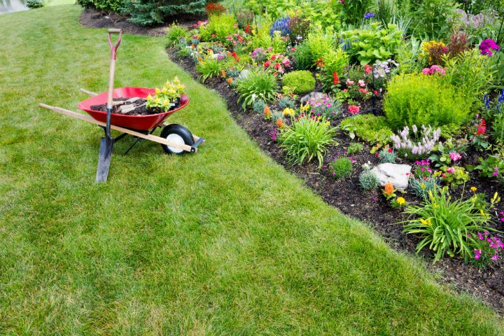 7 Reasons Landscaping Matters For More Than Just Looks   Your Complete  Source For Outdoor Lighting, Landscaping U0026 Lawn Care Service In Broken Arrow  U0026 Tulsa!