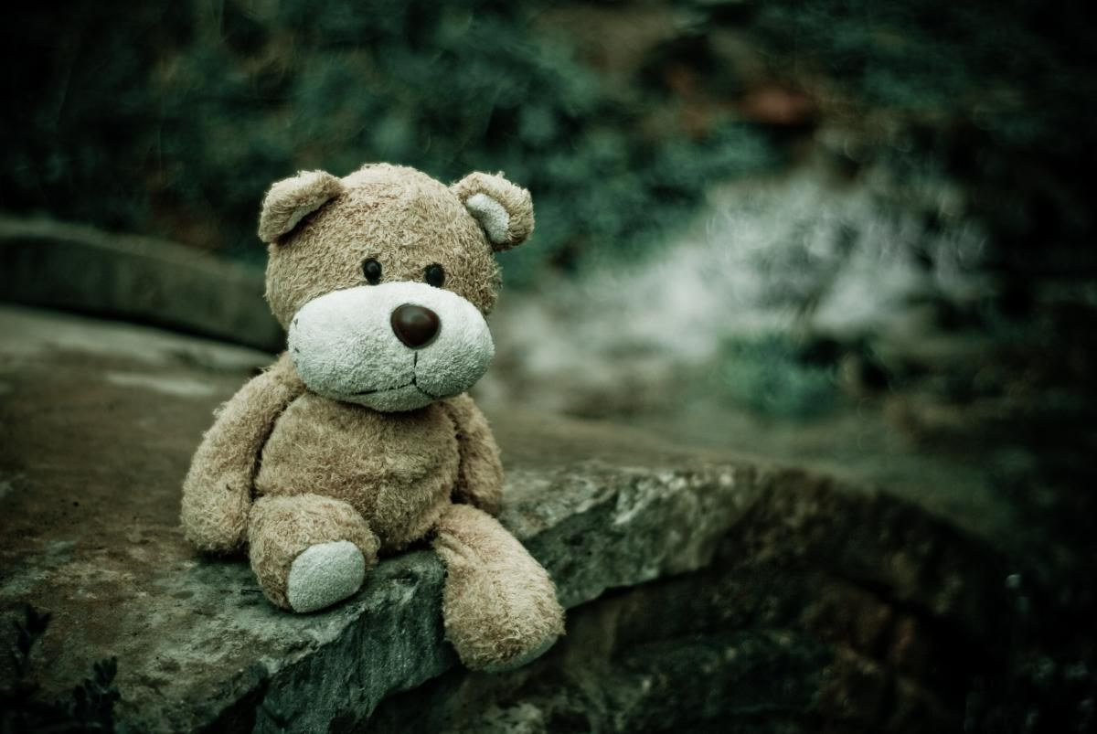 ✳ Check out this free photoBrown Teddy Bear Sitting on Edge of Pavement    ✅ https://avopix.com/photo/43102-brown-teddy-bear-sitting-on-edge-of-pavement    #plaything #teddy #chemise #toy #bear #avopix #free #photos #public #domain