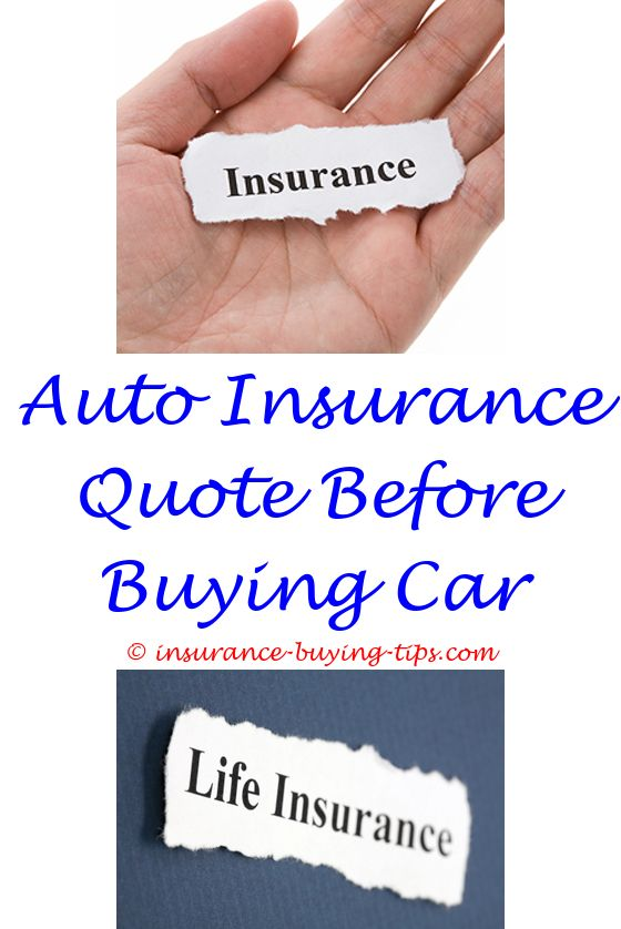 Auto Quote Enchanting Auto Insurance  Group Health Insurance Term Life Insurance And