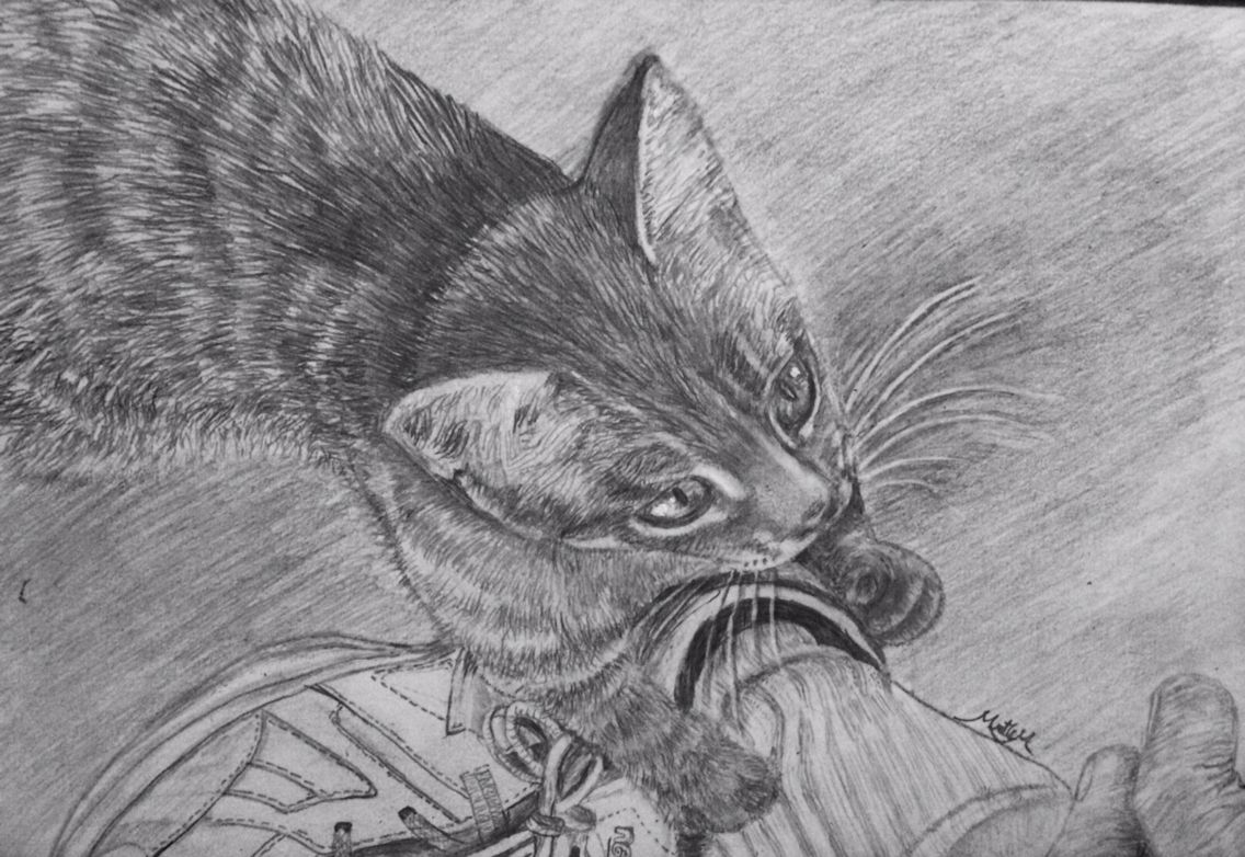 Bobby S Kitten Pencil Drawing By Myrtle Kitten Drawing Sand Sculptures Watercolor Paintings