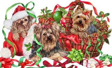 --Yorkshire Terrier - T'is the Season