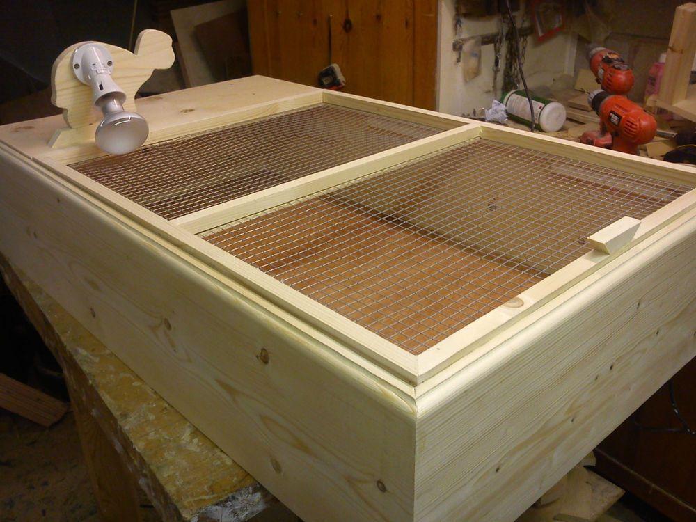 open plan tortoise table for the larger tortoise