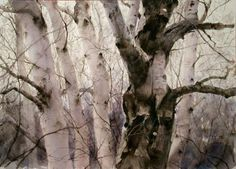 关维兴 / Guan Weixing (b. 1940, China) Old Tree. 2010 watercolour. 74 x 51 cm