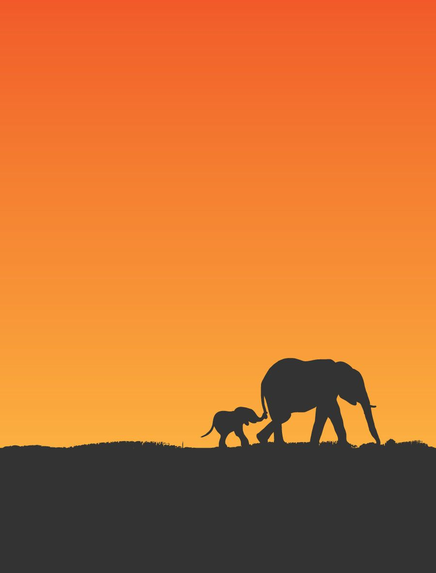 elephants <3 one of my favorite animals
